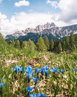 Dolomiten/Italien