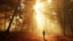 light pic.jpg