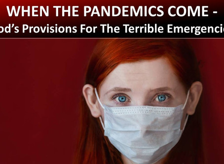 When the Pandemics Come