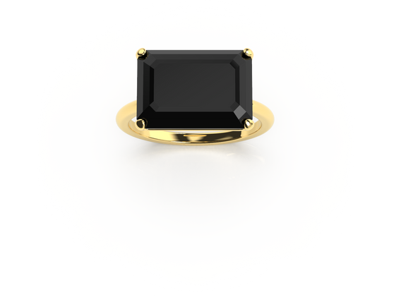 Bruce Trick - Onyx Ring perspective 1.pn