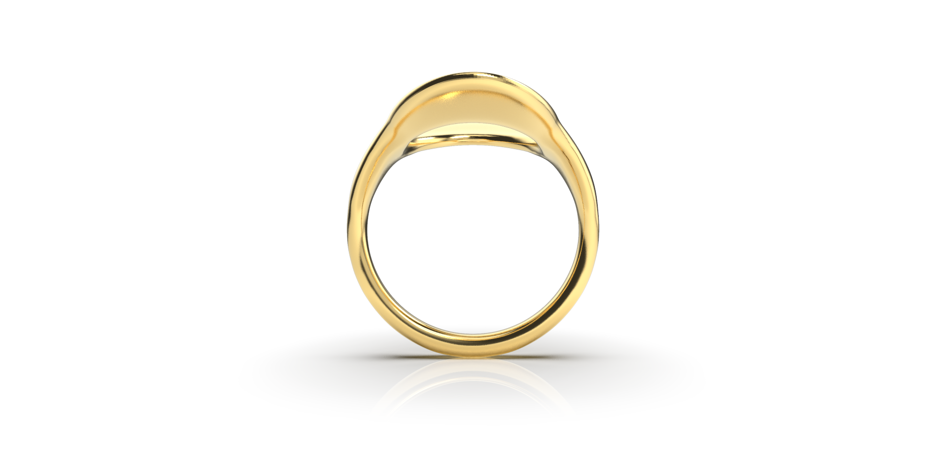 Bruce Trick - Saddle Ring front.png