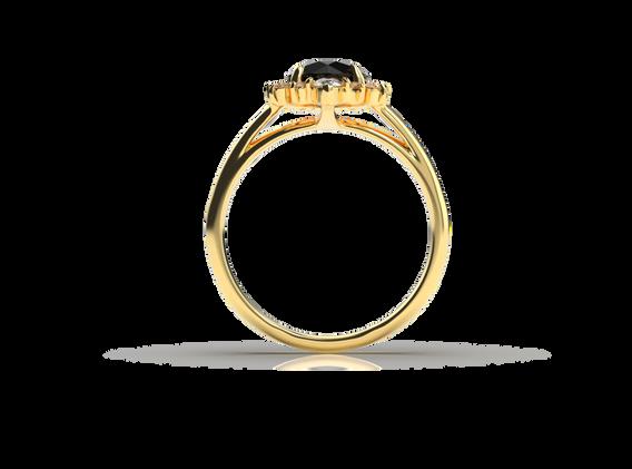 Bruce Trick - Black Diamond Ring front.p