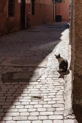 Marrakesch21.jpg