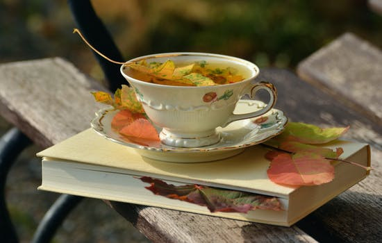 tea cup in autumn with fall elements