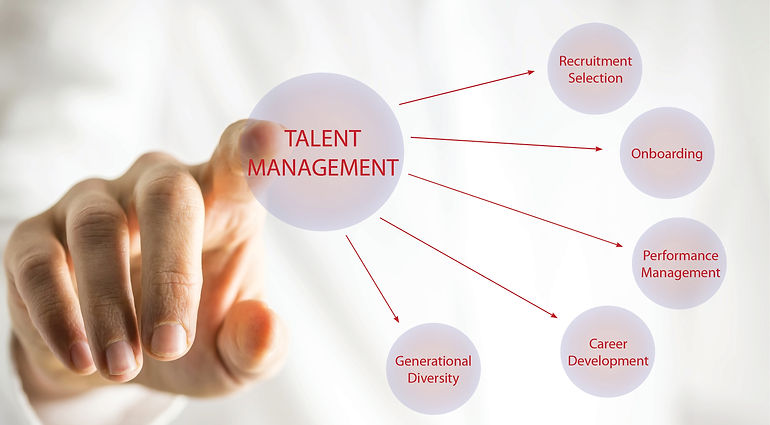 Talent Management Image.jpg