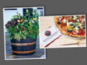 pizza garden planting party.jpg