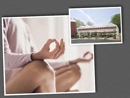 Greenhouse Yoga Collage.jpg