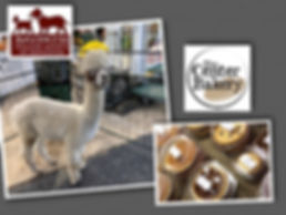 alpacas and bakery 2020 collage.jpg