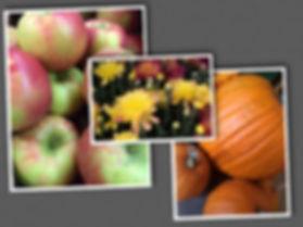 Fall Collage Apples Mum Pumpkin_Septembe