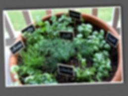 Mobile Herb Garden.jpg