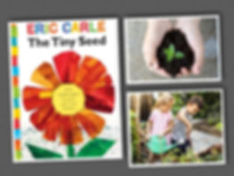 The Tiny Seed Collage.jpg