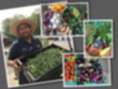 Farmers Market 8.3.17.jpg