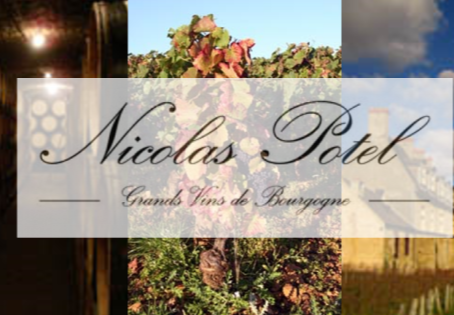 An Extensive Selection of Nicolas Potel Reds from 1994 to 2014