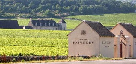 Ex-Domaine Faiveley Collection from 1995 to 2003, Starting from HK$435 per bottle