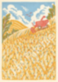 Harvest-copyrighted-426x600.jpg