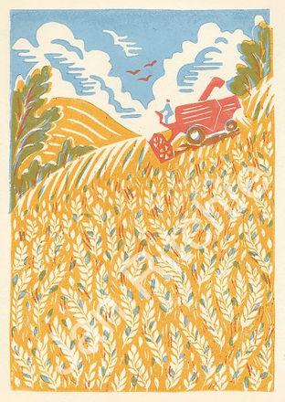 Harvest-copyrighted-426x600.jpg