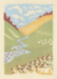 sheep-431x600.jpg