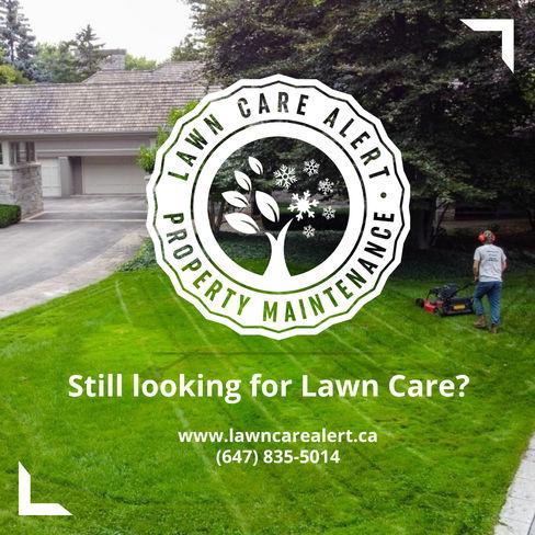 Lawn Care Alert - Display Ad.jpeg
