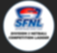 Ladders 2019 Netball 3.jpg
