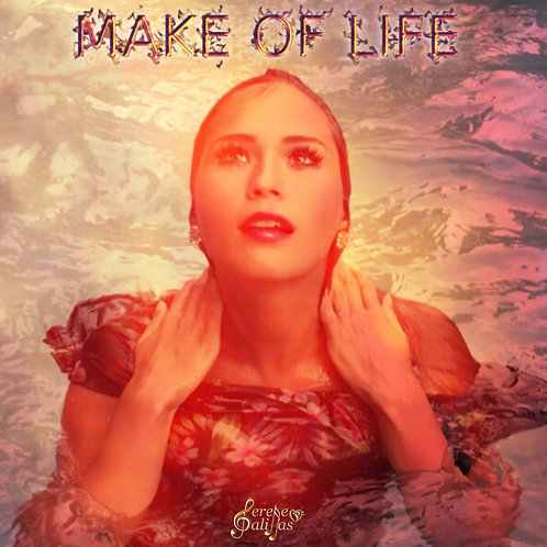 Make Of Life