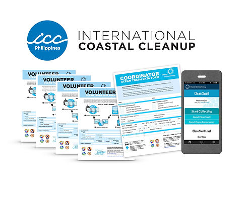 ICC Page Data Cards