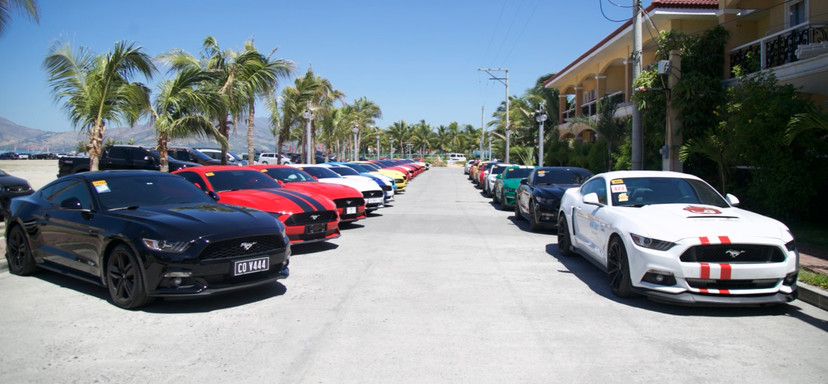 Hundreds of Ford Mustangs and Rangers joined the event organized by the Autohub Group