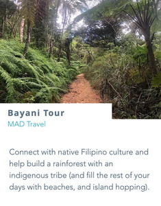 Connect with native Filipino culture and help build a rainforest with an indigenous tribe (and fill the rest of your days with beaches, and island hopping).