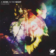 A HOWL IN THE NIGHT COVER.jpg