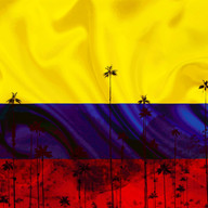 Fuerza Colombia Poster 1.jpg