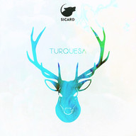 Cover Turquesa.jpg