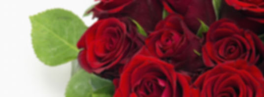 Roses-anniversary-bouquet-flowers-love-r