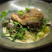 Fillet of pollack with clam and samphire