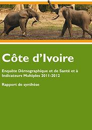 EDS-MICS2011-2012_Rapport_de_synthese-1.