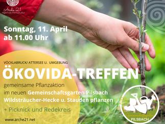 """Ökovida-Treffen im APRIL - Pflanzaktion im neuen """"Gemeinschaftsgarten Pilsbach"""""""