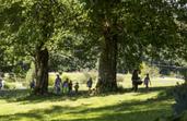 Gemeinsamer Ausflug unserer Ökovida-Community