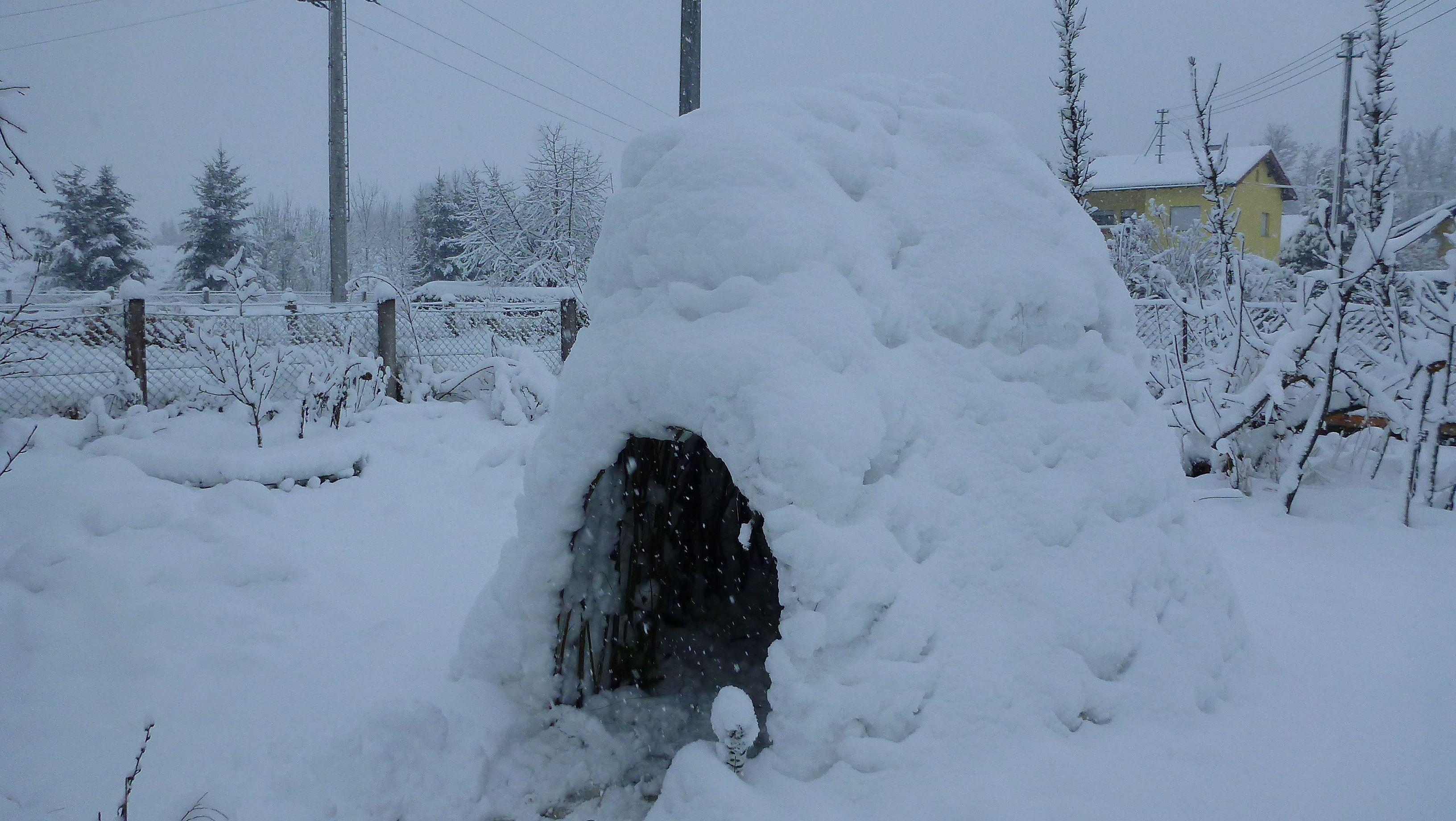 Das Weidenhäuschen im Winter