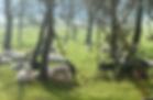 Bildschirmfoto 2020-01-13 um 18.18.59.pn