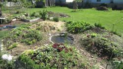 Mandalagarten im Frühjahr