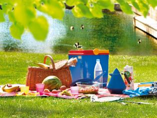 Ökovida-Brunch-Picknick am Attersee