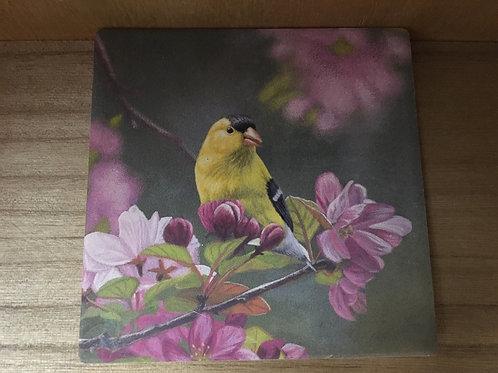 Finch Slate Coaster