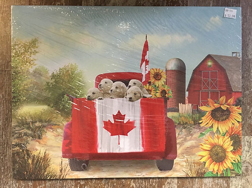 Rural Canada Canvas Print