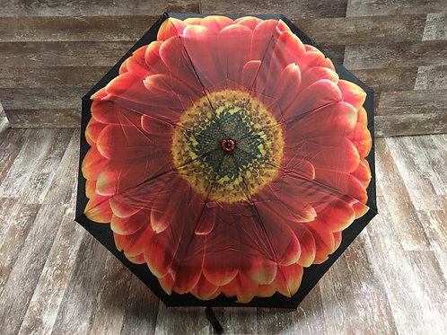 """36"""" x 22"""" Red Sunflower Umbrella by Abbott"""
