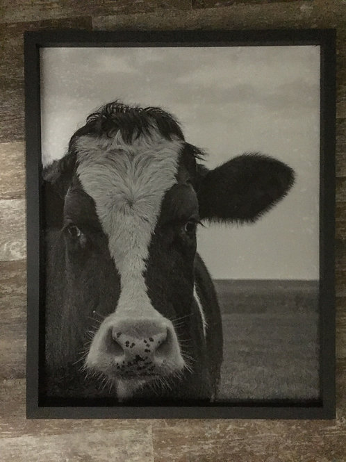 """23.5"""" x 18.75"""" Wood Framed Cow Picture"""