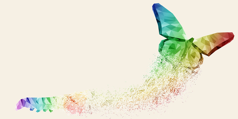 butterfly-satya-background.jpg