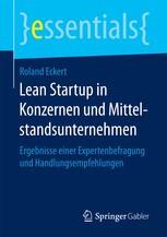 Learn Startup in Konzernen und Mittelstandsunternehmen