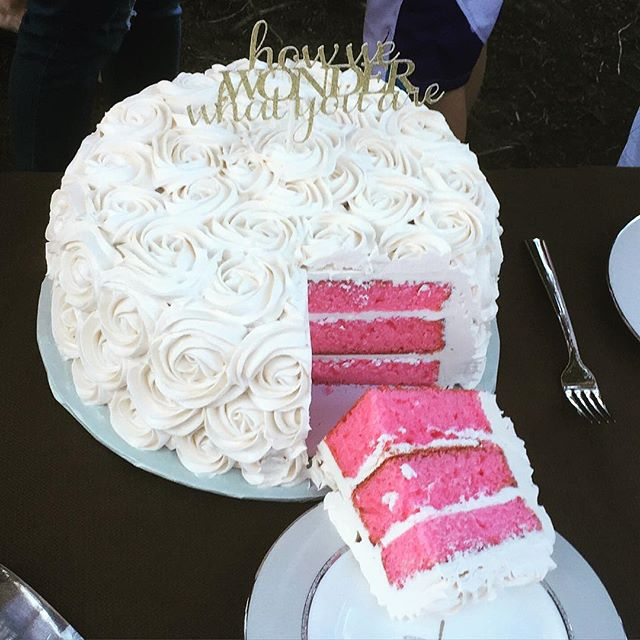 This gender reveal cake was planned for