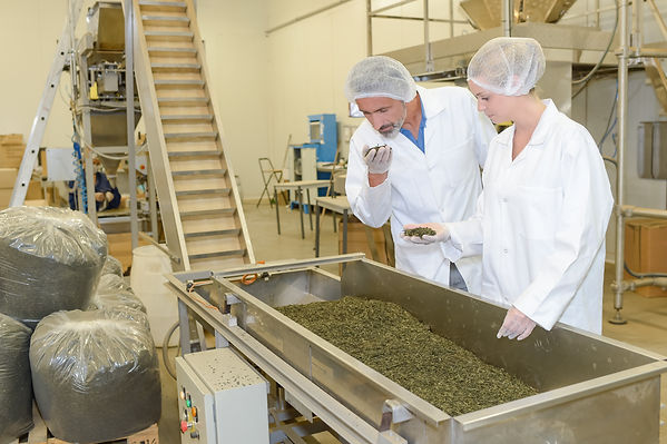 Travailleur dans une usine agroalimentaire