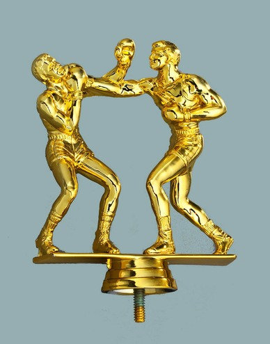 2 Boxer in Gold 133mm