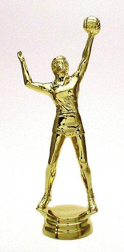 Volleyball Herren Gold 156mm