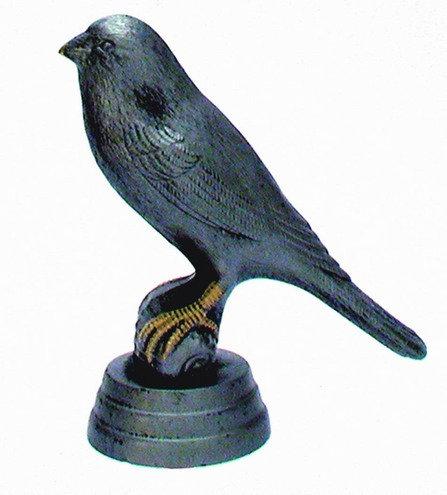 Kanarien Vogel Resin 82mm